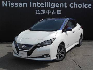 e+ X Nissan Inteligent Choice